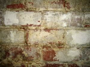 Basement Mold & Moisture Removal By Budget Waterproofing