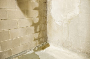 sign of wet basement